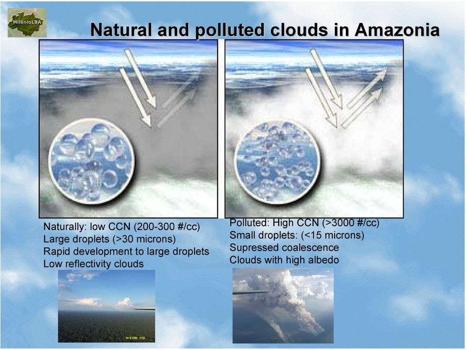 droplets Low reflectivity clouds Polluted: High CCN (>3000 #/cc)