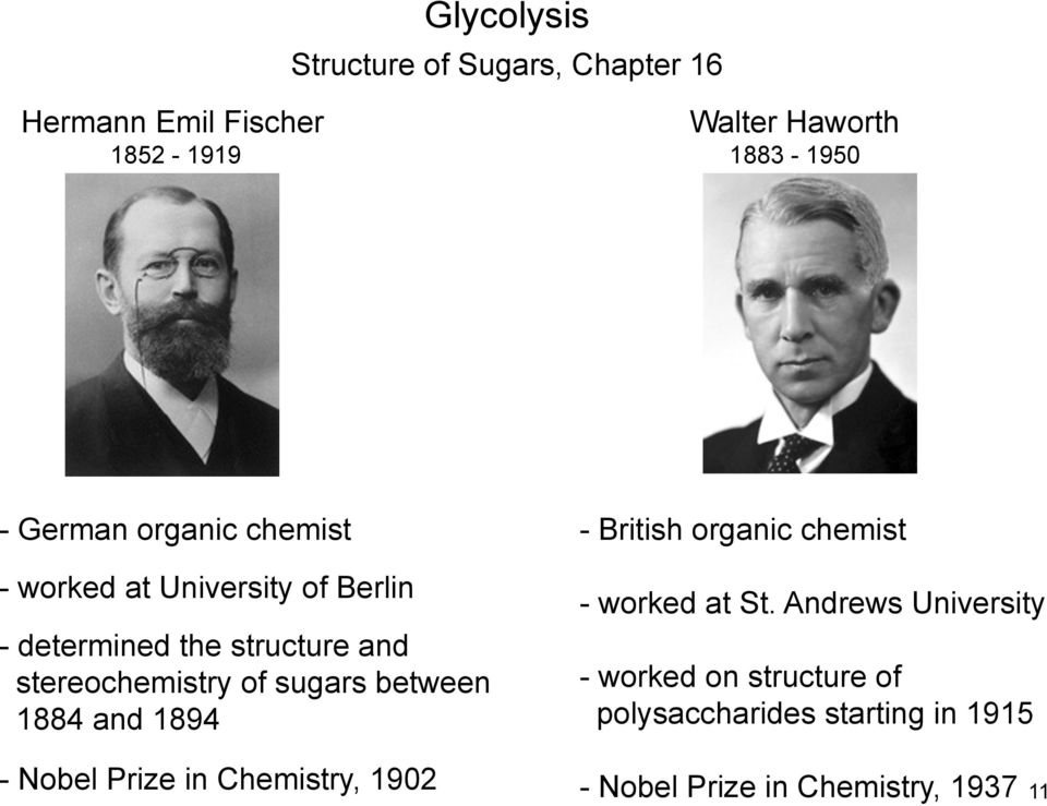 sugars between 1884 and 1894 - Nobel Prize in Chemistry, 1902 - British organic chemist - worked at St.