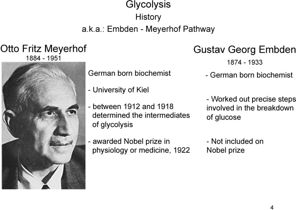 University of Kiel - between 1912 and 1918 determined the intermediates of glycolysis - awarded