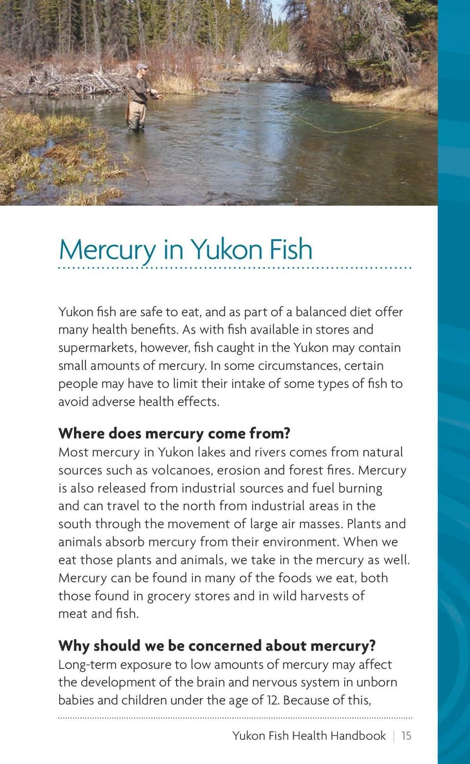 Yukon fish health handbook pdf for Why do fish have mercury