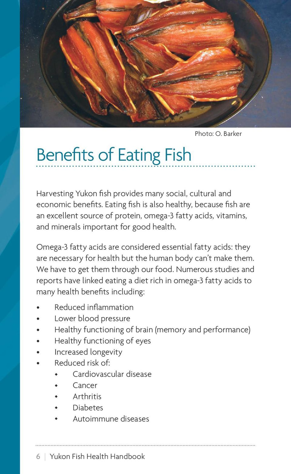 Yukon fish health handbook pdf for Health benefits of fish