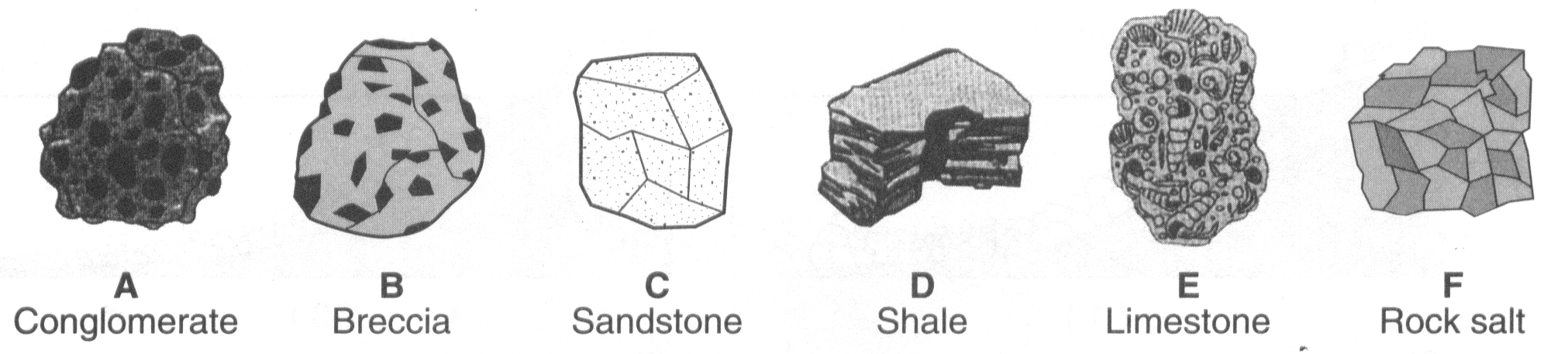 11. The diagrams below show the crystal shapes of two minerals.