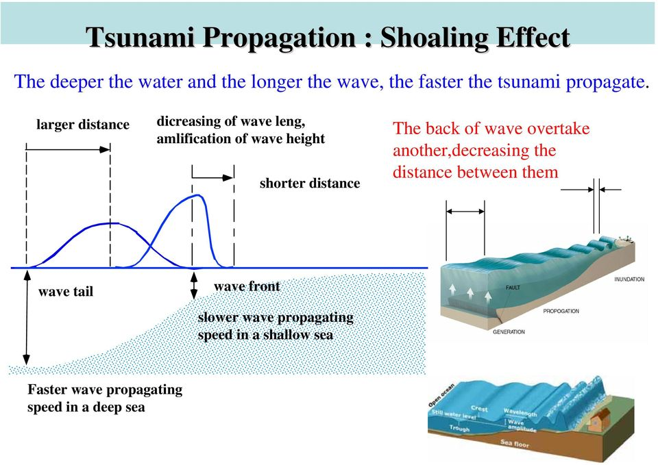 larger distance dicreasing of wave leng, amlification of wave height shorter distance The back