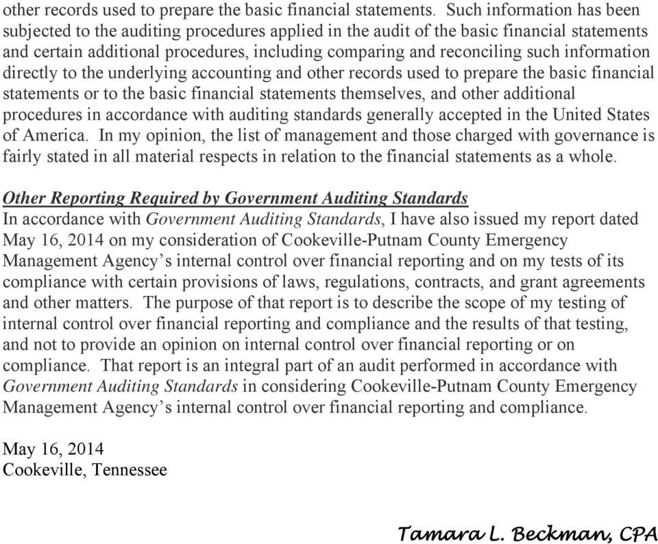 generally accepted auditing standards pdf
