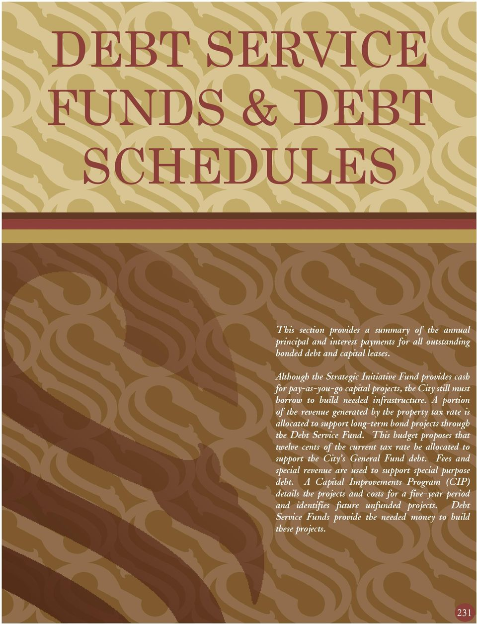 Accounting/ Debt Service Funds term paper 8778