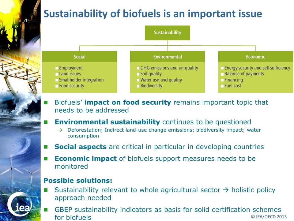 critical in particular in developing countries Economic impact of biofuels support measures needs to be monitored Possible solutions: Sustainability