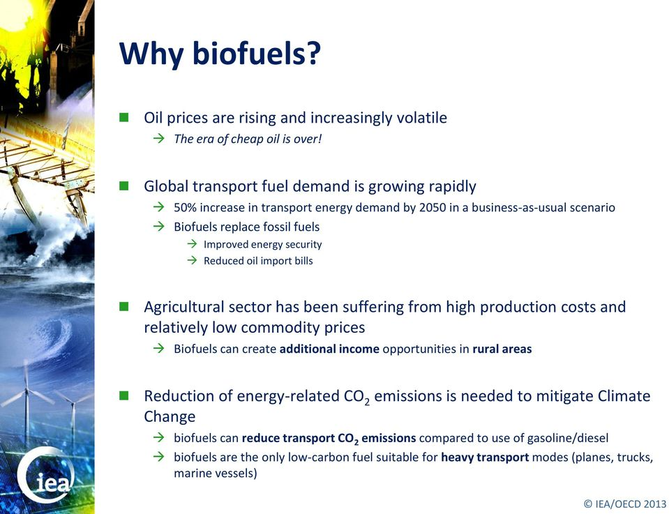 Reduced oil import bills Agricultural sector has been suffering from high production costs and relatively low commodity prices Biofuels can create additional income opportunities in