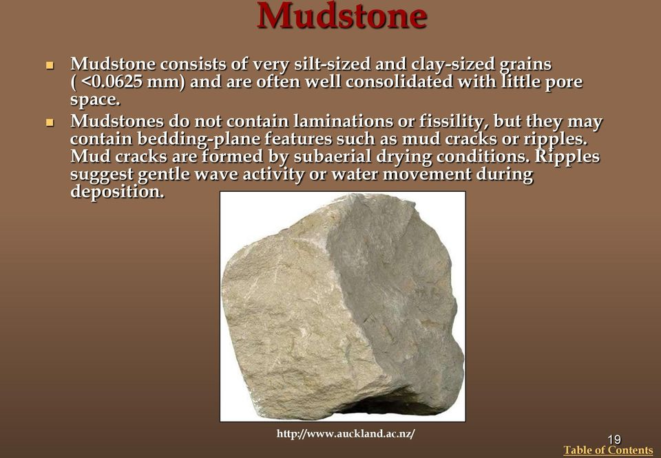 Mudstones do not contain laminations or fissility, but they may contain bedding-plane features such as