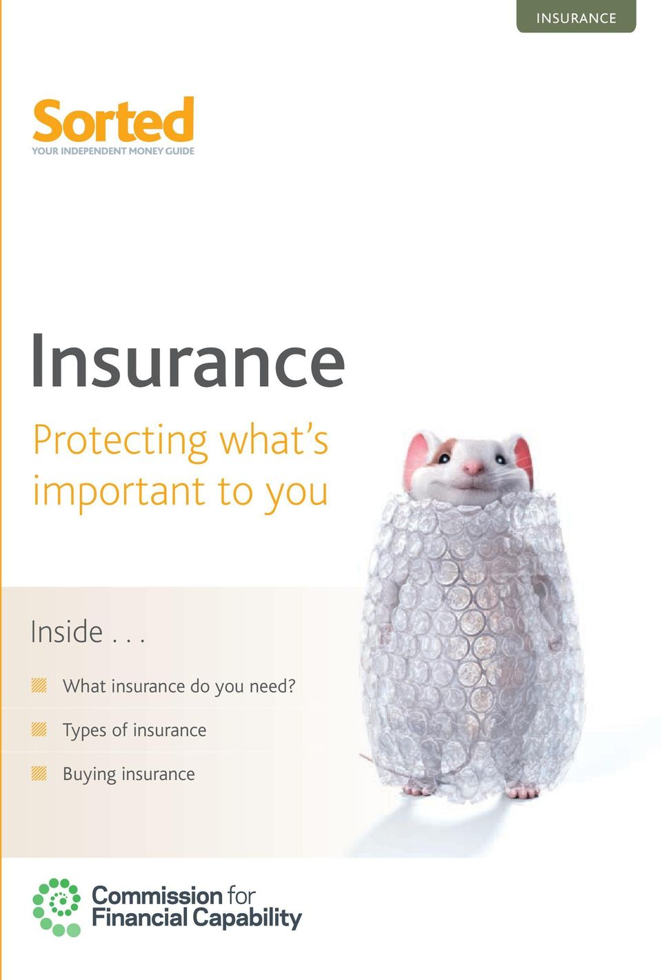 .. What insurance do you need?