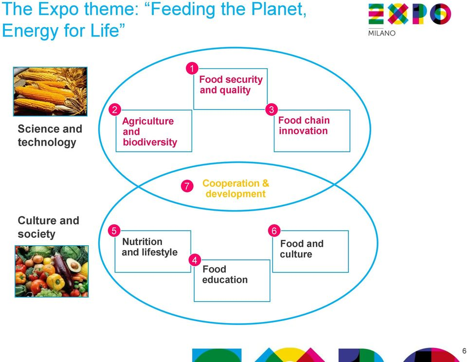 Food chain innovation 7 Cooperation & development Culture and