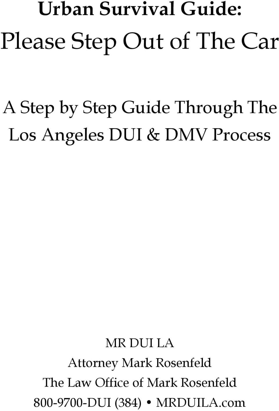 Process MR DUI LA Attorney Mark Rosenfeld The Law