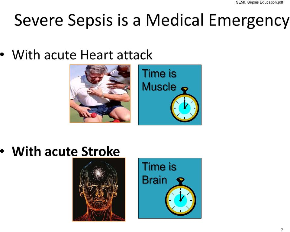 Time is Muscle SE5h, Sepsis