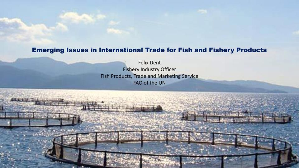 Fishery Industry Officer Fish Products,