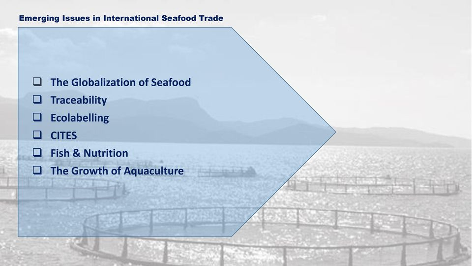 Seafood Traceability Ecolabelling