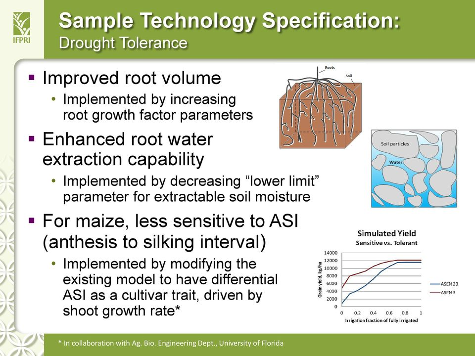 moisture For maize, less sensitive to ASI (anthesis to silking interval) Implemented by modifying the existing model to have
