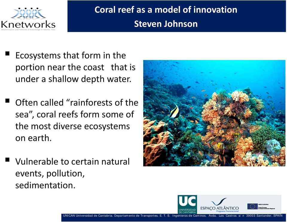 Often called rainforests of the sea, coral reefs form some of the most