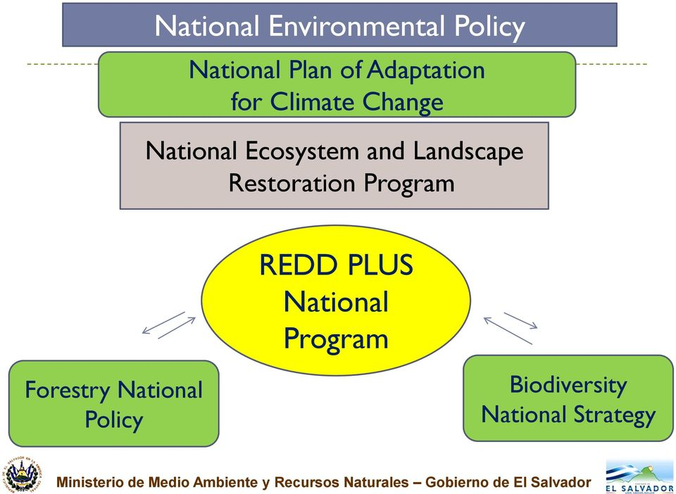 National Policy REDD PLUS National Program Biodiversity National