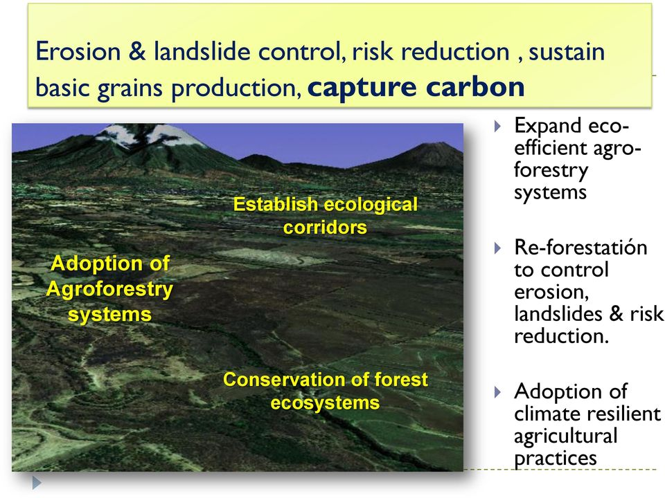 ecoefficient agroforestry systems Re-forestatión to control erosion, landslides & risk
