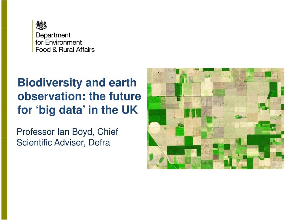 big data in the UK Professor