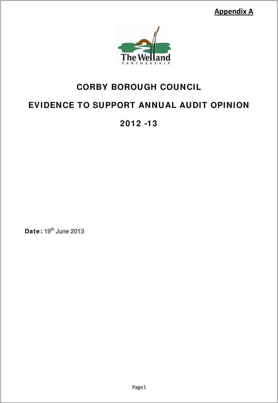 ANNUAL AUDIT OPINION