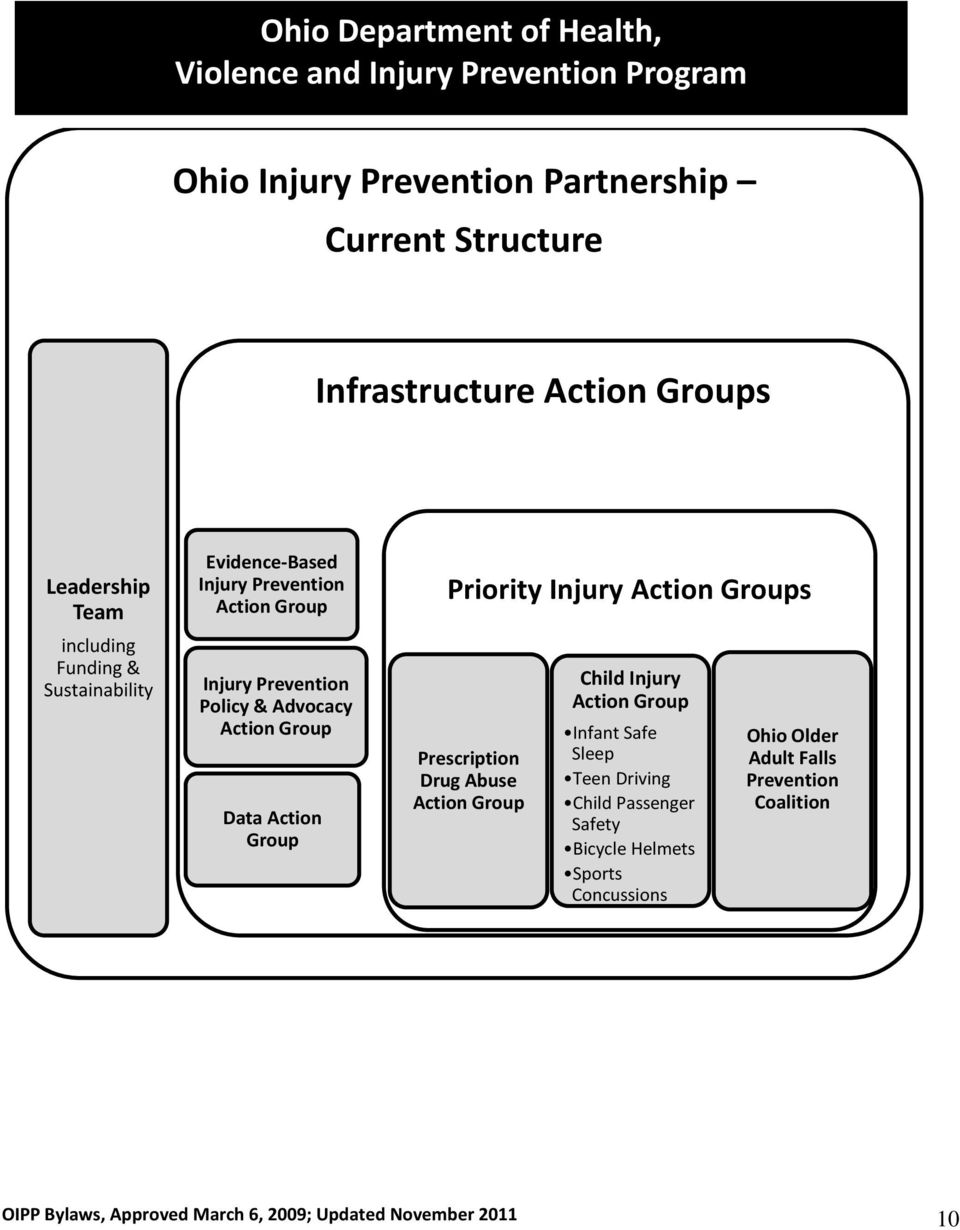 Data Action Group Priority Injury Action Groups Prescription Drug Abuse Action Group Child Injury Action Group Infant Safe Sleep Teen Driving Child