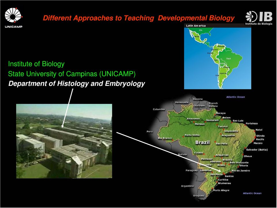 (UNICAMP) Department