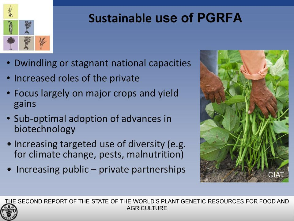 targeted use of diversity (e.g. for climate change, pests, malnutrition) Increasing public private