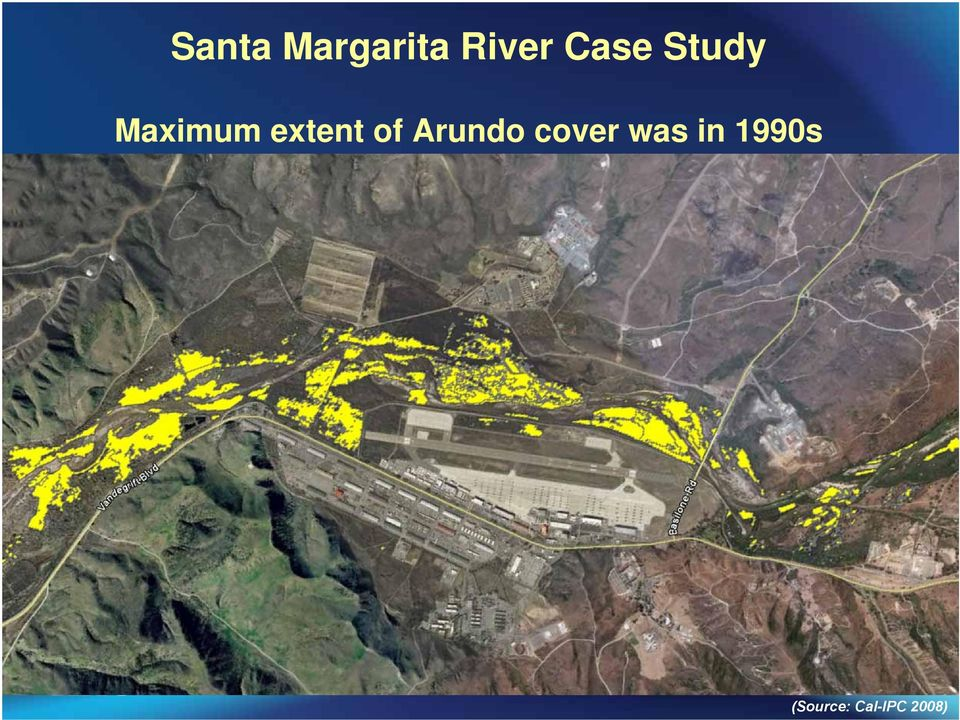 extent of Arundo cover