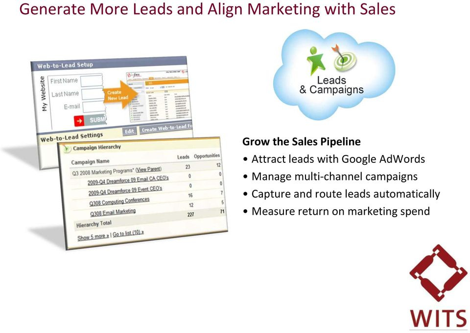 Google AdWords Manage multi-channel campaigns Capture and