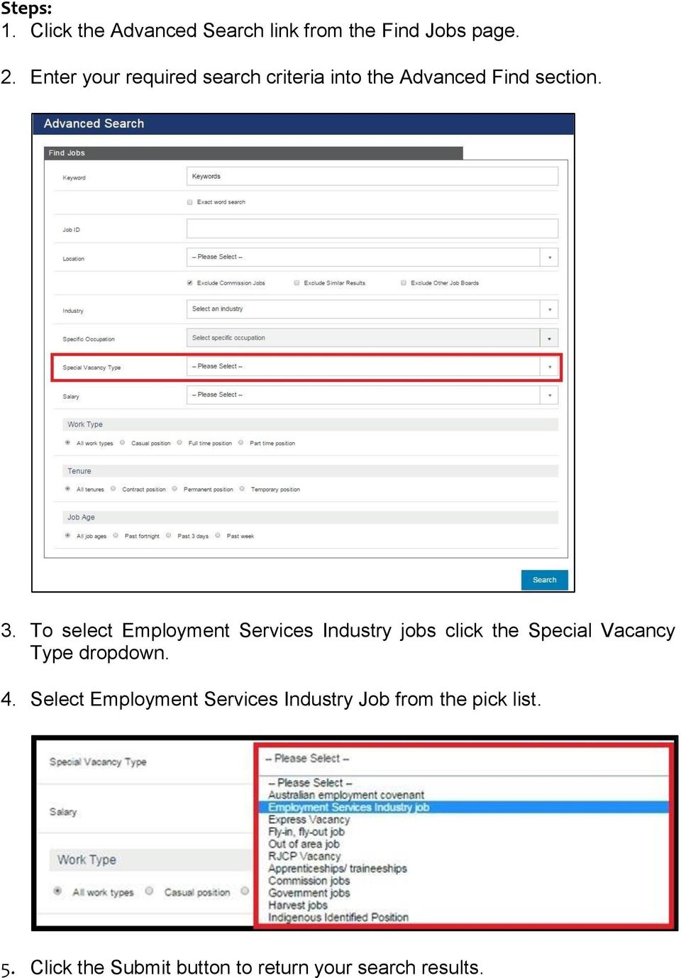 To select Employment Services Industry jobs click the Special Vacancy Type dropdown. 4.