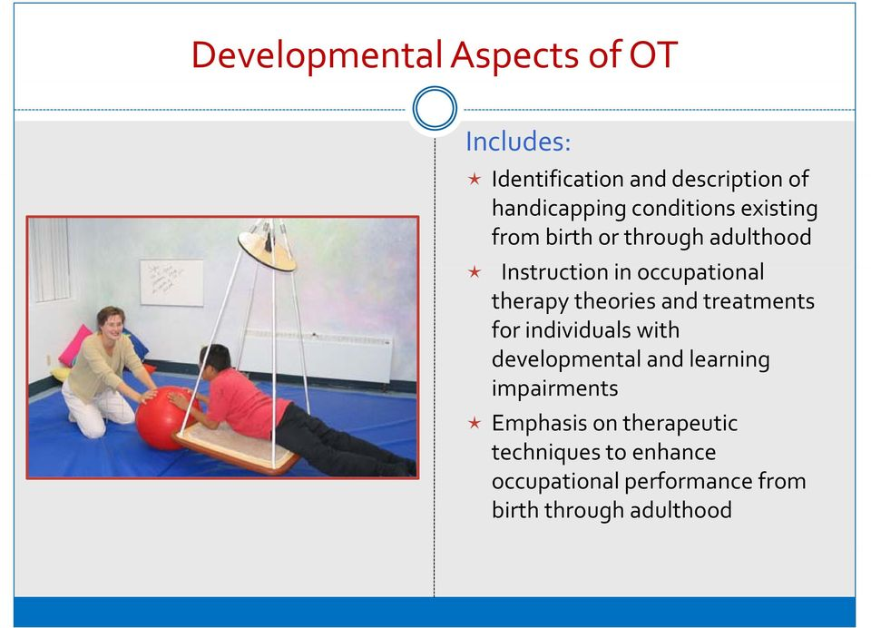 theories and treatments for individuals with developmental and learning impairments