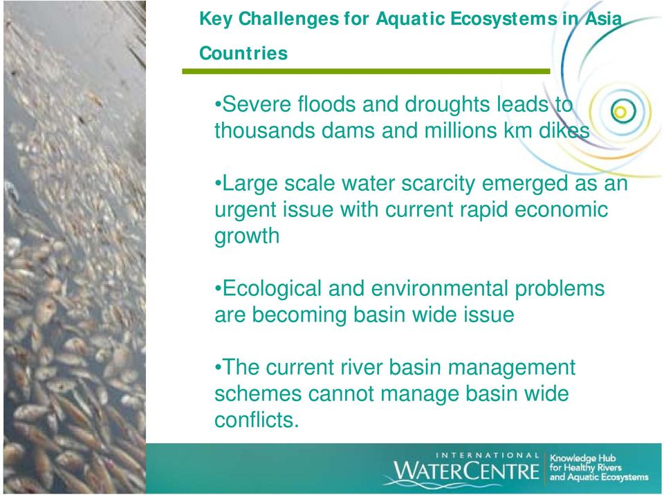 current rapid economic growth Ecological and environmental problems are becoming basin wide issue
