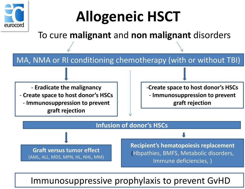 Immunosuppression to prevent graft rejection Infusion of donor s HSCs Graft versus tumor effect (AML, ALL, MDS, MPN, HL, NHL, MM)