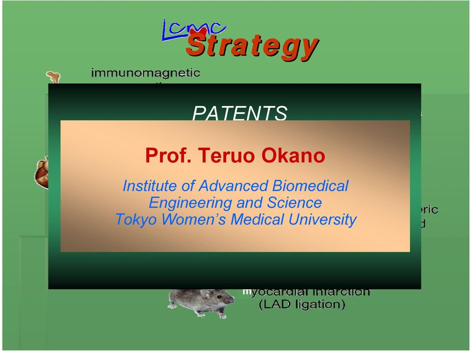 Advanced Biomedical Engineering and Science Tokyo Women s