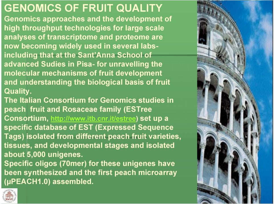 The Italian Consortium for Genomics studies in peach fruit and Rosaceae family (ESTree Consortium, http://www.itb.cnr.