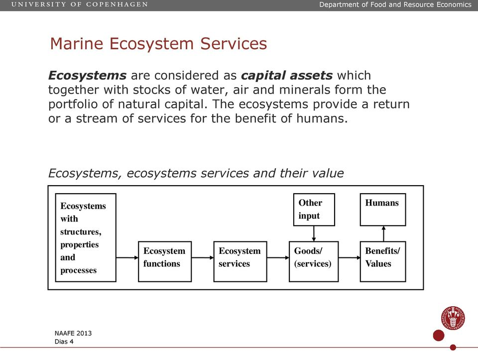 The ecosystems provide a return or a stream of services for the benefit of humans.