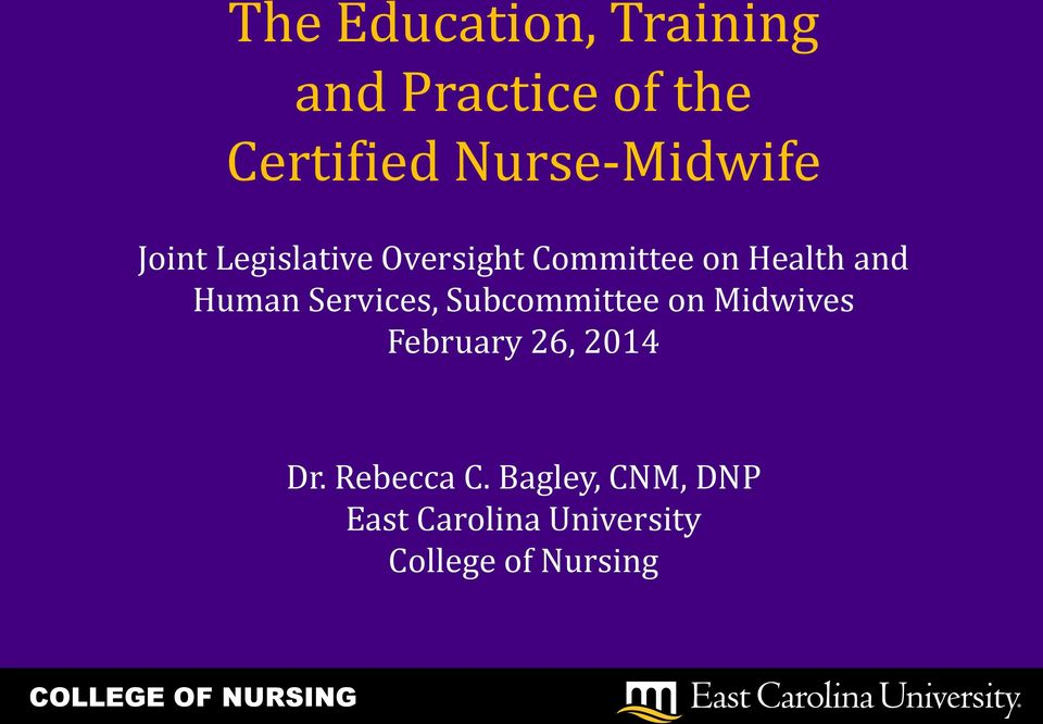 and Human Services, Subcommittee on Midwives February 26, 2014
