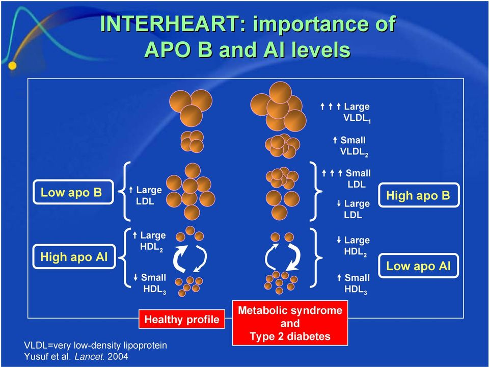 HDL 3 Large HDL 2 Small HDL 3 Low apo AI VLDL=very low-density lipoprotein