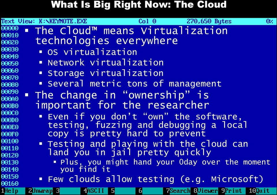 t own the software, testing, fuzzing and debugging a local copy is pretty hard to prevent Testing and playing with the cloud can