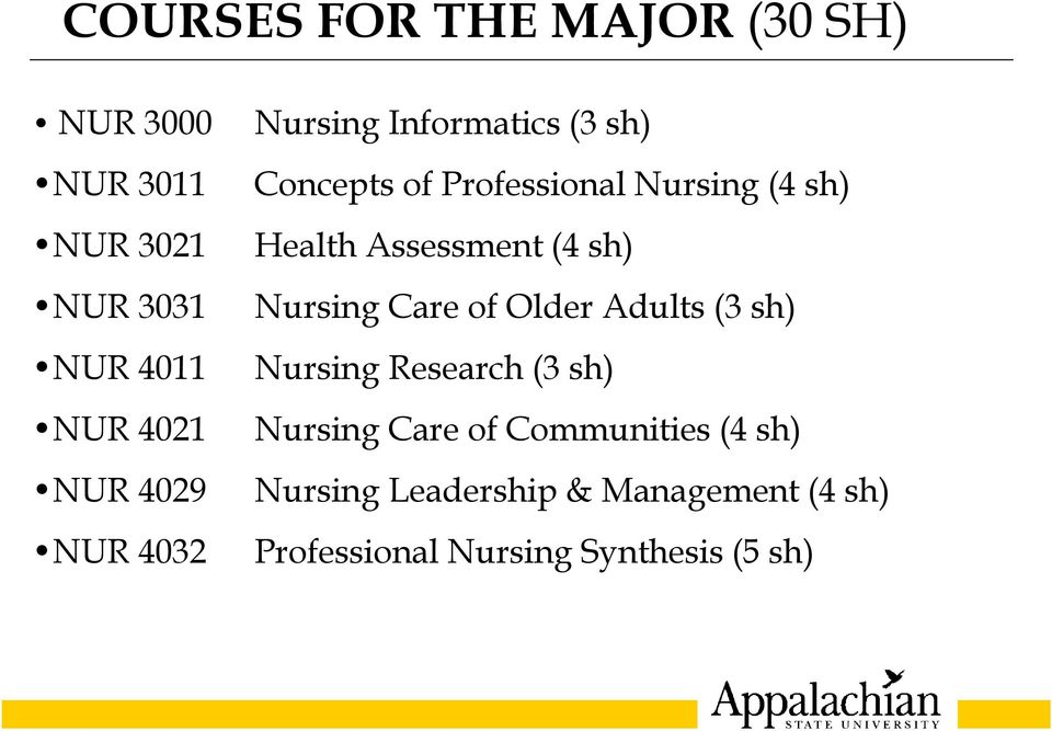 Assessment (4 sh) Nursing Care of Older Adults (3 sh) Nursing Research (3 sh) Nursing Care