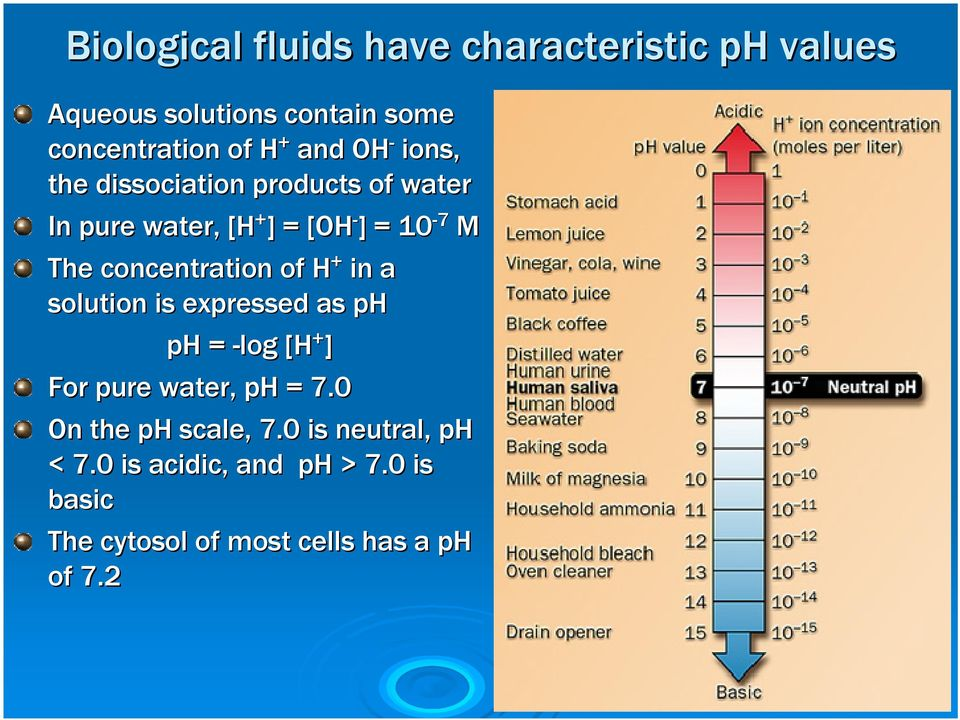 concentration of H + in a solution is expressed as ph ph = -log [H + ] For pure water, ph = 7.