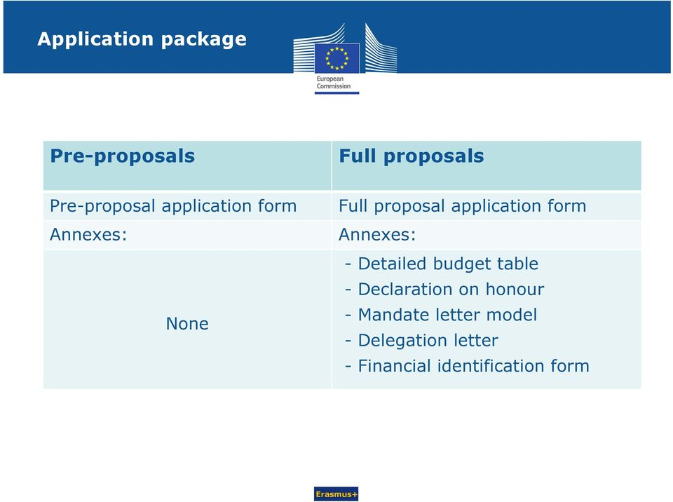 Annexes: - Detailed budget table - Declaration on honour -