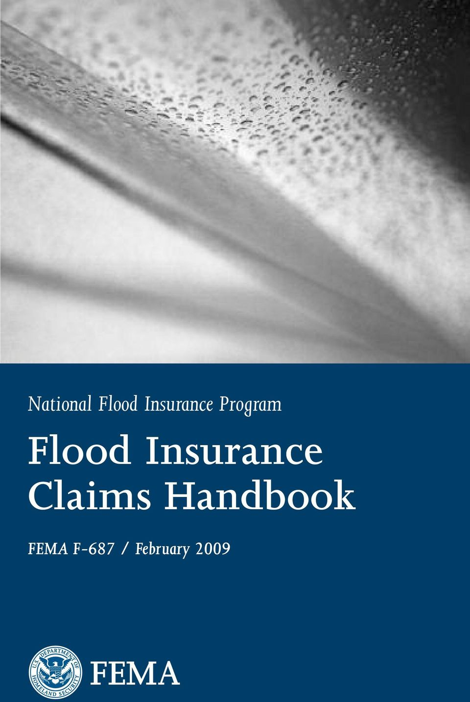 Flood Insurance Claims