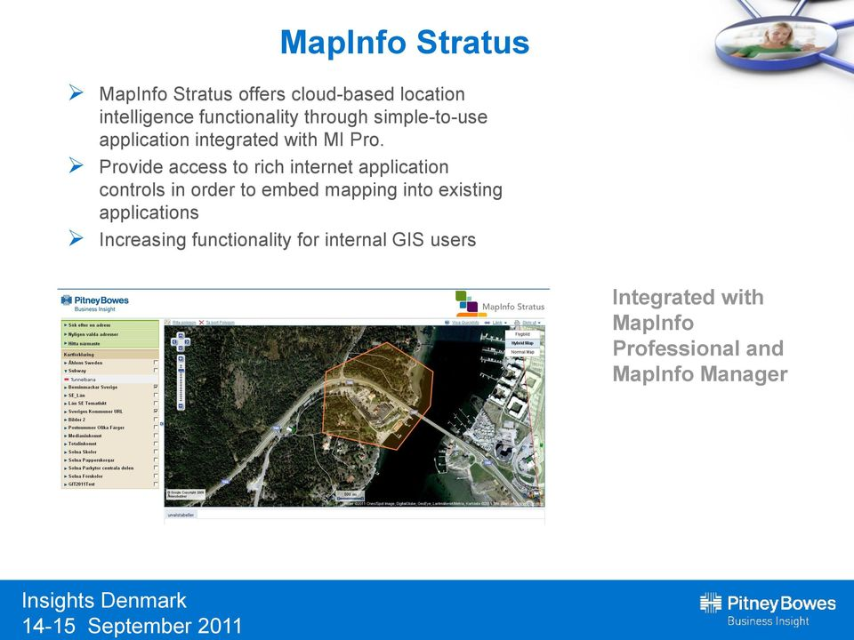 Provide access to rich internet application controls in order to embed mapping into