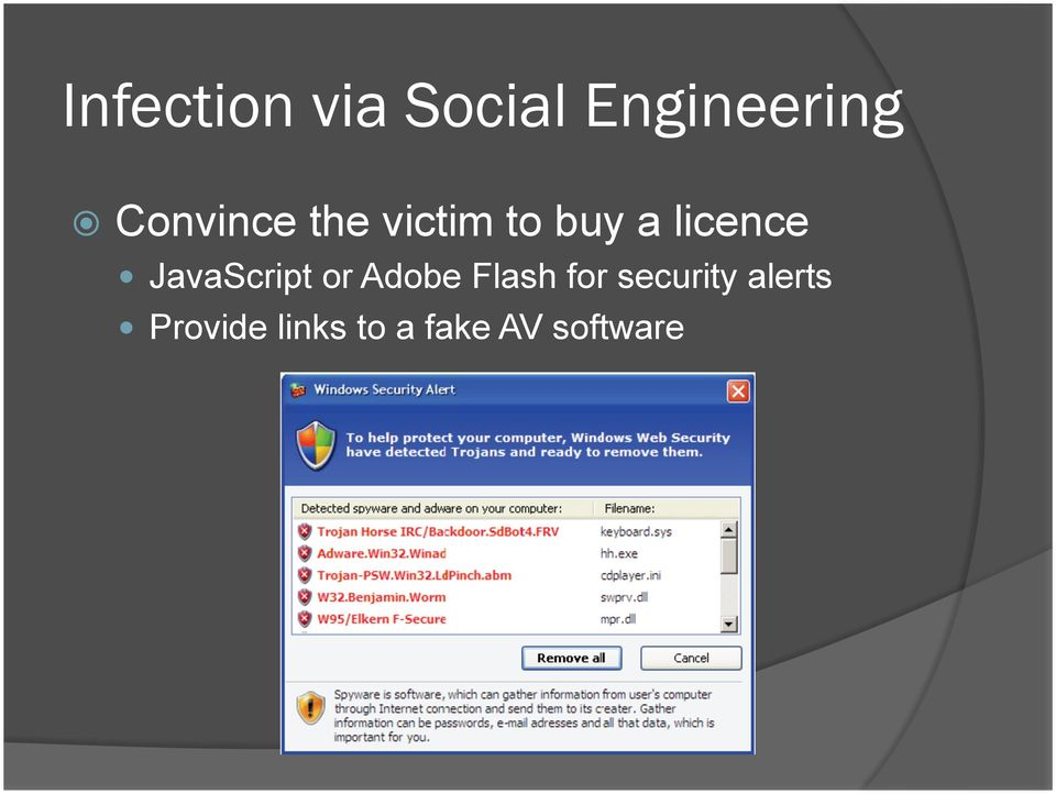 JavaScript or Adobe Flash for