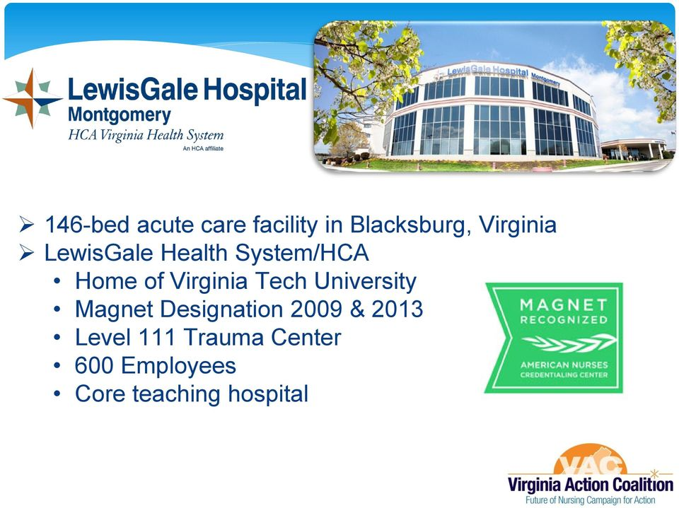Virginia Tech University Magnet Designation 2009 &