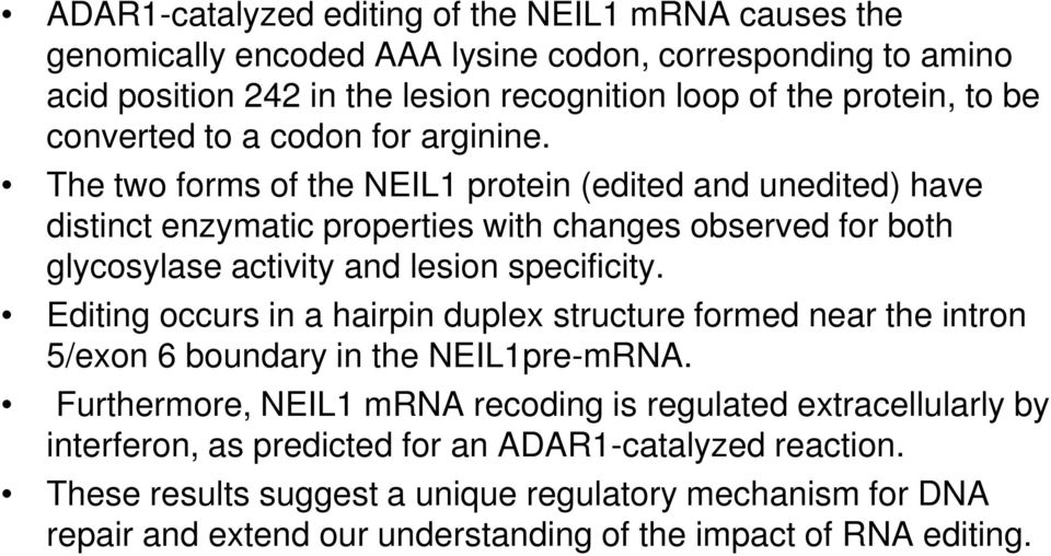 The two forms of the NEIL1 protein (edited and unedited) have distinct enzymatic properties with changes observed for both glycosylase activity and lesion specificity.