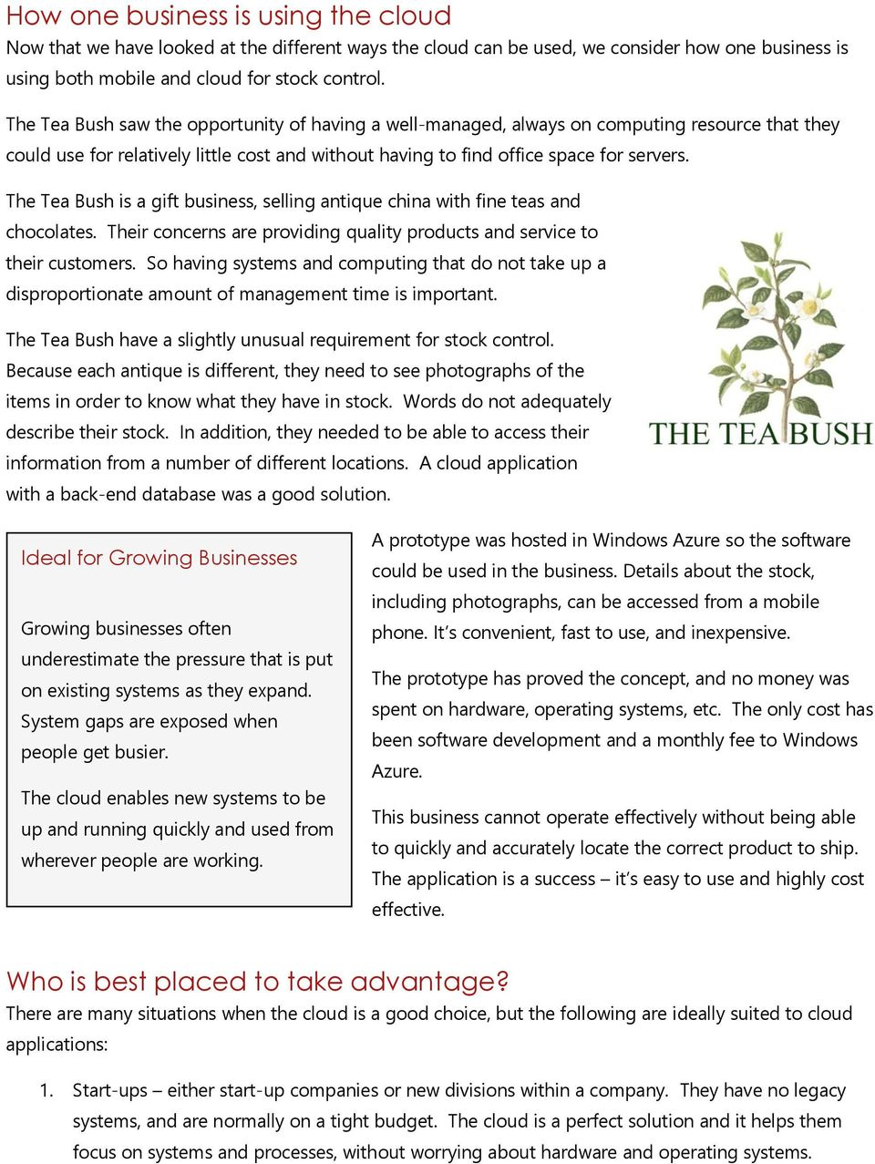 The Tea Bush is a gift business, selling antique china with fine teas and chocolates. Their concerns are providing quality products and service to their customers.