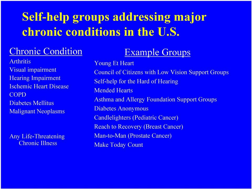 Council of Citizens with Low Vision Support Groups Self-help for the Hard of Hearing Mended Hearts Asthma and Allergy Foundation