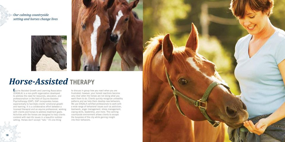 It is a collaborative effort between a licensed therapist and an equine professional, working with clients and horses to address treatment goals.